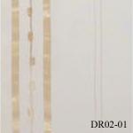 DR02-01