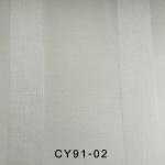 CY91-02