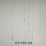 CY102-02
