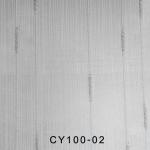 CY100-02
