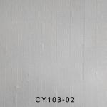 CY103-02