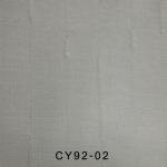 CY92-02