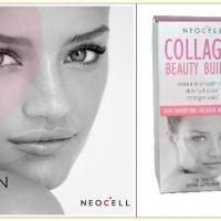 คอลาเจน/Collagen