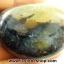เดนไดทริก อาเกต Dendritic Agateขัดมันจากมาดากัสการ์ (52g)