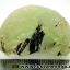 ▽พรีไนท์ (Prehnite)ธรรมชาติ ประเทศมาลี (20.4g)