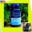 Lipowheat oil 470mg.ต้านริ่วรอย thumbnail 1
