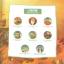 นิทานสามก๊ก ตอนเผาทัพโจโฉ (Battle of Chibi) +CD thumbnail 2
