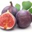 มะเดื่อฝรั่ง ม่วง fig purple patlican / 10 เมล็ด thumbnail 3