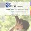 中国微镜头:汉语视听说系列教材.中级.上. 爱好篇 China Focus: Chinese Audiovisual-Speaking Course Intermediate Level (I) Hobbies thumbnail 2