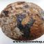 หินเต่าหินมงคลจากฝั่งลาว (2.4kg)