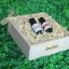 SenOdos ชุดของขวัญ ชุดกิ๊ฟเซ็ท น้ำมันหอมระเหย น้ำมันหอมอโรม่า กลิ่นดอกไม้ Romantic Floral Set - Essential Oil 10ml x 2 กลิ่น ( กลิ่นกุหลาบ / กลิ่นมะลิ ) บรรจุในกล่องไม้สน รูปทรงเหลี่ยม สวยงาม คุณภาพดี นำเข้าจากนิวซีแลนด์ thumbnail 1