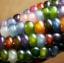 ข้าวโพดสายรุ้ง ข้าวโพดอัญมณี Corn Rainbow Glass Gem Corn / 10 เมล็ด thumbnail 3