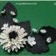 มุมดาเลีย ดอกขาวใบดำ thumbnail 1