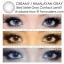 HIMALAYAN / CREAMY Dia.14.5 Gray สายตาปกติเท่านั้น thumbnail 8