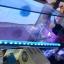 โคมหนีบ Led marine+ 18cm 7สี + รีโมท thumbnail 3