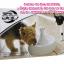 น้ำพุแมว Drinkwell รุ่น 360 ขนาด 3.7 ลิตร thumbnail 4