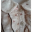 VJP5759- เดรสแฟชั่น ชีฟอง นำเข้า สีครีม อก 34 นิ้ว thumbnail 4