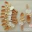 ของชำร่วยช้อนส้อมไม้ ผูกโบว์ห้อยแท็ก (ไซส์ M ความยาว 15 cm) thumbnail 4