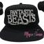 หมวกแก๊ป Fantastic Beasts thumbnail 1