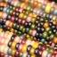 ข้าวโพดสายรุ้ง ข้าวโพดอัญมณี Corn Rainbow Glass Gem Corn / 10 เมล็ด thumbnail 2