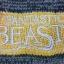 ผ้าพันคอ Fantastic Beasts thumbnail 3