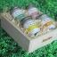 SenOdos ชุดของขวัญ ชุดกิ๊ฟเซ็ท เทียนหอมอโรม่า ชุดกลิ่นผลไม้ Fruity Delight Set - Soy Candles 45g x4กลิ่น (กลิ่นเลมอน, กลิ่นส้ม, กลิ่นมะกรูด, กลิ่นเกรปฟรุต) บรรจุในกล่องไม้สน รูปทรงเหลี่ยม สวยงาม คุณภาพดี นำเข้าจากนิวซีแลนด์ thumbnail 1