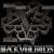 วง Black Veil Brides