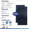 แผงโซล่าเซลล์ Poly (Dortmund Energy) 300W