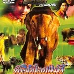 ช้างเพื่อนแก้ว วีซีดีภาพยนตร์อินเดีย