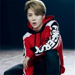 เสื้อฮู้ดแจ็คเก็ตแขนยาวสีแดง EXO แต่งตัวอักษรแขนเสื้อ