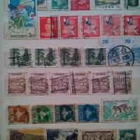 แสตมป์ stamp