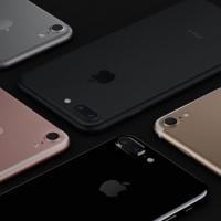 ฟิล์มกระจก Iphone 7