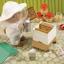 ซิลวาเนียน คนเลี้ยงผึ้งและรังผึ้ง (UK) Sylvanian Families Beekeeper & Beehive thumbnail 3