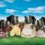 ครอบครัวซิลวาเนียน สกั๊งค์ 4 ตัว (UK) Sylvanian Families Skunk Family thumbnail 1