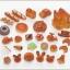 ซิลวาเนียน ร้านเบเกอรี่ (EU) Sylvanian Families Brick Oven Bakery thumbnail 7