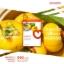 อมาโด้ เอส [AMADO S] กล่องส้ม thumbnail 1