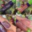 ( พรีออเดอร์ ) Makeup Monster GildedMatte Liquid Lipstick สี Holy Grail thumbnail 3