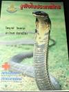งูพิษในประเทศไทย โดย ไพบูลย์ จินตกุล ลาวัณย์ จันทร์โฮม หนา 175 หน้า ปี 2539