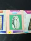 สารานุกรมพระเครื่องฉบับกระเป๋า ชุด พระเนื้อผงยอดนิยม ชุด 3 เล่ม โดย สมศักดิ์ ศกุนตนาฏ , คเณศ์พร หนารวม 288 หน้า