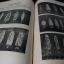 นครสุโขทัย (มีเรื่อง ประวัติศาสตร์ โบราณคดี วัฒนธรรม สารคดี นวนิยาย พระเครื่องราง )จัดพิมพ์ขึ้นเพื่อหาทุนสร้างอนุสาวรีย์ พ่อขุนรามคำเเหงมหาราช พระผู้ให้กำเนิดอักษรไทย ปกแข็ง ปี 2496 thumbnail 11