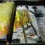 นิทรรศการศิลปกรรม เชิดชูเกียรติ อ.สน สีมาตรัง หนา 96 หน้า ปี 2550 thumbnail 3