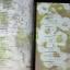 คู่มือเวชกรรมไทย โดย วุฒิ วุฒิธรรมเวช เเละคณะ 400 หน้า ปี 2555 thumbnail 5