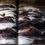 ประเทศไทย 7 วันในราชอาณาจักร (Times Editions) รวมภาพถ่าย ฝีมือ 50 ช่างภาพผู้มีชื่อสำคัญของโลก ปกแข็ง 288 หน้า ปี 1987 thumbnail 10