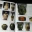 Chinese Ceramics .The New Standard Guide by HE LI ปกแข็ง 352 หน้า พิมพ์ปี 1996 หนัก 2.3 กก thumbnail 5