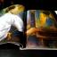 FINE ART VOLUME 4 NO 38 ฉบับมีเนื้อหา วัชระ กล้าค้าขาย พิมพ์ปี 2007 thumbnail 6