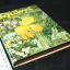 สูตรยาสมุนไพร โดย พ.ต.อ.เขียน รัตนสุวรรณ ปกแข็ง 238 หน้า ปี 2520 thumbnail 2