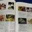 การใช้สมุนไพรรักษาคนไข้ ที่ถูกสัตว์ต่างๆกัด ต่อย เเละ รับประทานอาหารเเละพืช-สัตว์ที่เป็นพิษ โดย พตอ. ชลอ อุทกภาชน์ หนา 140 หน้า thumbnail 14