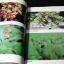 คู่มือการใช้สมุนไพร โดย ศ.พเยาว์ เหมือนวงษืญาติ หนา 298 หน้า ปี 2532 thumbnail 19