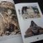 การอนุรักษ์วัดพระศรีรัตนมหาธาตุเชลียง สุโขทัย โดย กรมศิลปากร หนา 200 หน้า พิมพ์ 1000 เล่ม ปี 2540 thumbnail 4