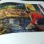 การเเสดงศิลปกรรมเทิดหล้า กาญจนาภิเษกสมโภช โดย ธนาคารไทยพาณิขย์ หนา 102 หน้า ปี 2538 thumbnail 12